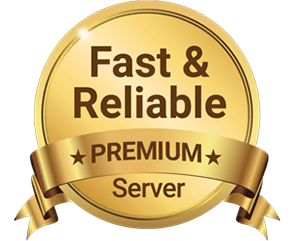 fast and reliable premium server
