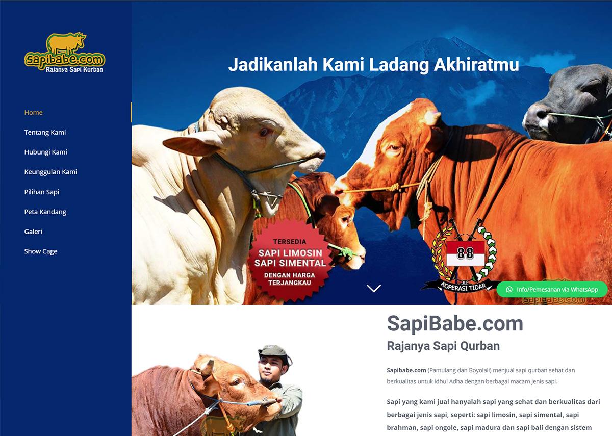 website sapibabe.com
